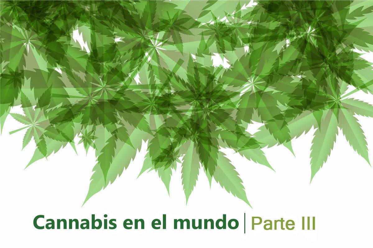 Cannabis mundo tres